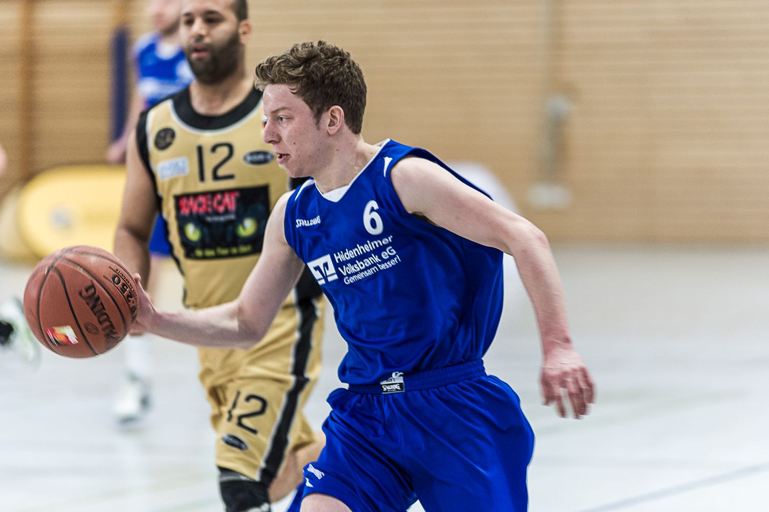 heidenheim basketball