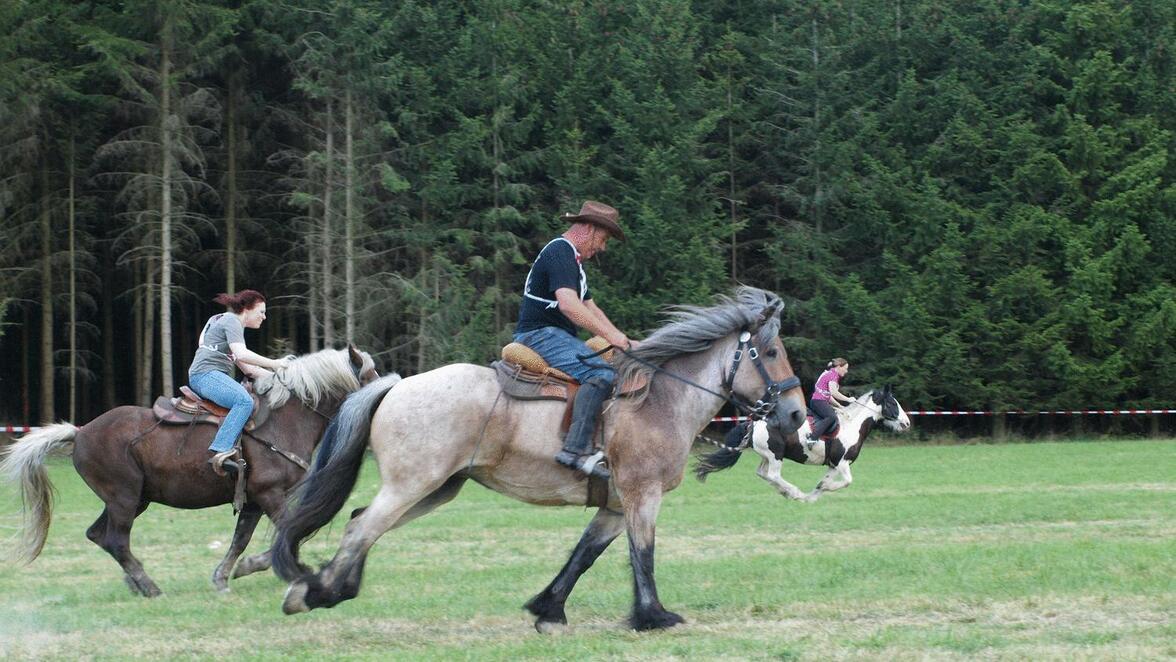 Tempo Beim Pferderennen