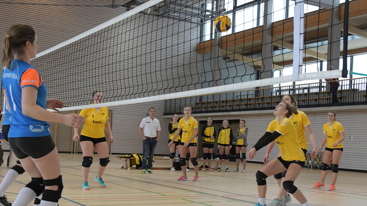 huge selection of b4334 c98fa Bildergalerie: Frickenhofer Volleyball-Damen geben alles ...