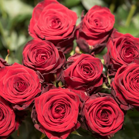 Valentinstag 5: Last-Minute-Geschenke für Männer: Schnelle