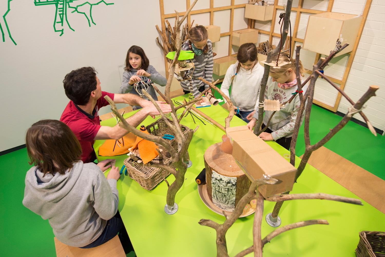 Neu-Ulm: Wo die Eisbären kuscheln: Neue Schau im Kindermuseum - SWP