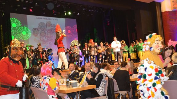 Narrenball in Ehingen