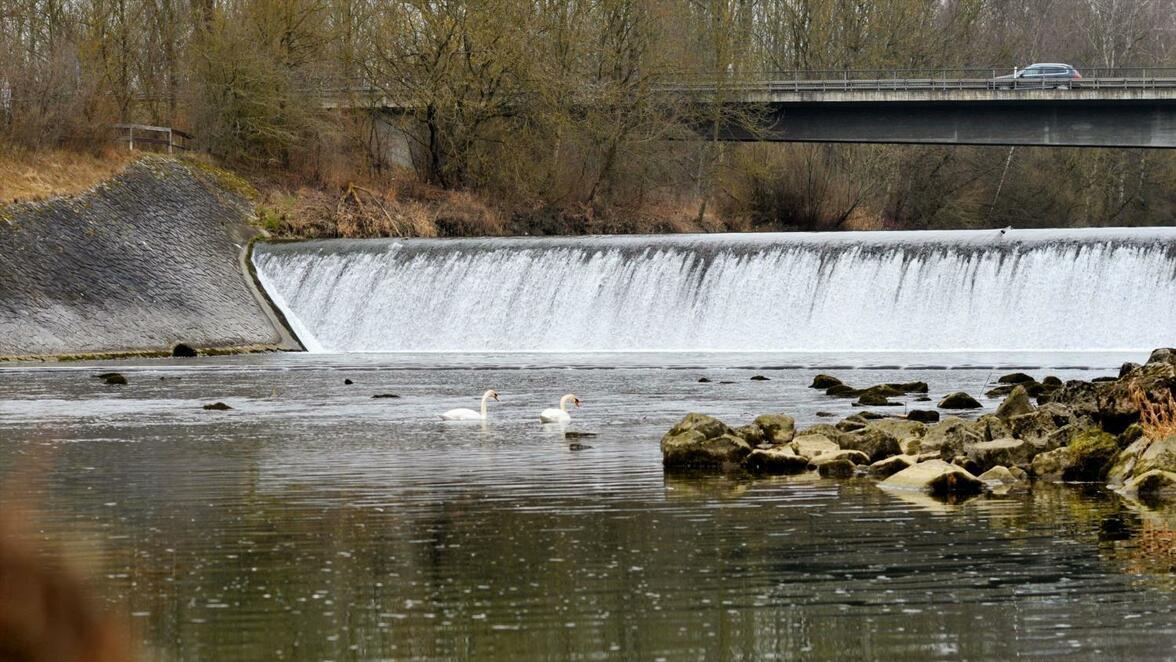 An dem alten Stauwehr bei Dietenheim soll ein kleines Flusskraftwerk entstehen.