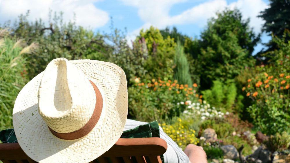 Garten Pflanzen Tipps Vom Experten So Baue Ich Gemüse Kräuter Und